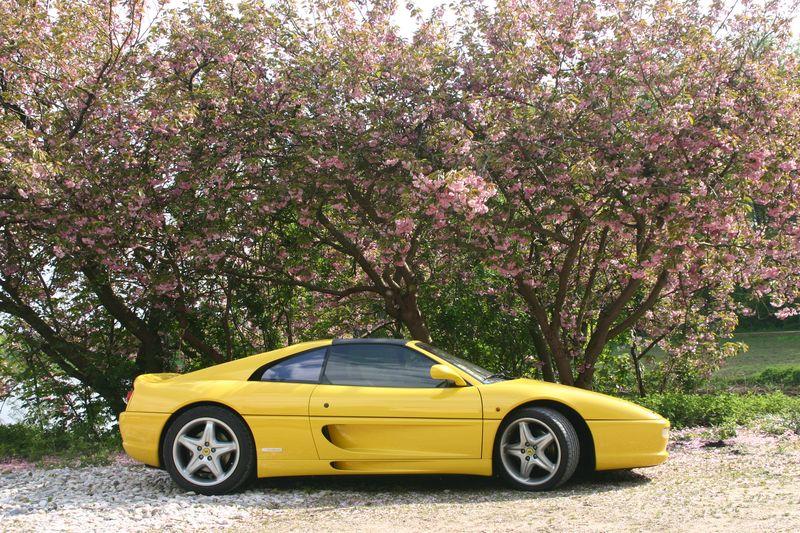 Ton Pret De Ferrari 355 GTS