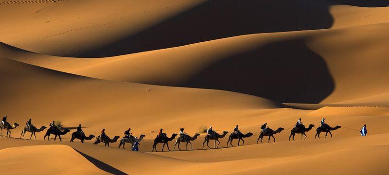 Camel Trekking in Morocco