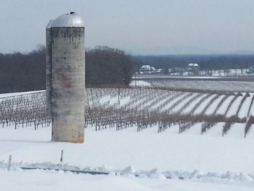 Grace Vineyard silo